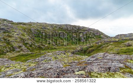 Tundra Of The Kola Peninsula In Inclement Weather, Green Moss And Lichens, Rocks.russia