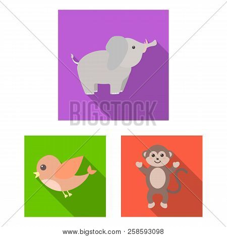 An Unrealistic Flat Animal Icons In Set Collection For Design. Toy Animals Vector Symbol Stock Web I