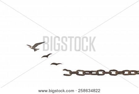 Freedom Day Concept: Birds Broken Chain And Flying To Sky Isolated On White Background