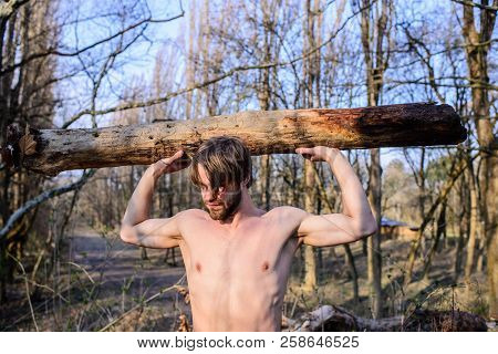 Man Brutal Strong Attractive Guy Collecting Wood In Forest. Lumberjack Or Woodman Sexy Naked Muscula
