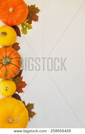 Yellow And Orange Pumpkins And Autumn Leaves On White Wooden Background For Harvest Fall And Thanksg