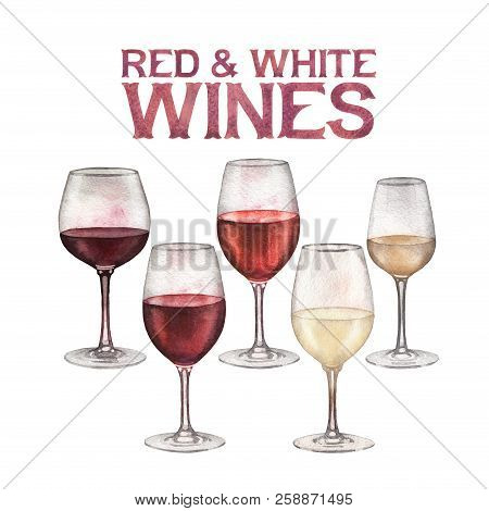 Watercolor Glasses Of Red And White Wines Isolated On White Background