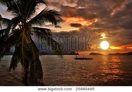 Paradise Tropical Sunset Seaside Scene