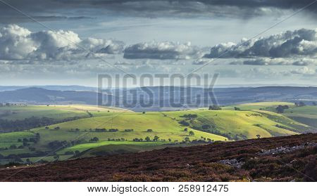 View Over Scenic Countryside Green Hills From Upland Covered In Blossom Heather. Stiperstones, Shrop