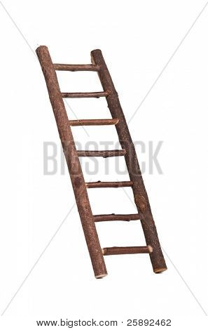 Diagonal wooden ladder
