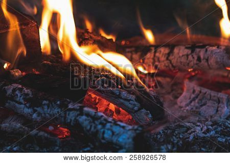 Charred Wood In The Fire. Burning Wood In Bright Flames In The Dark, Close Up. Toned Dark Fire Backg