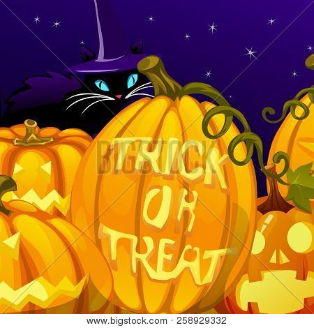 Poster In Style Of Holiday All Evil Halloween. The Sly Cat In Witch Hat And Pumpkins At Midnight. Gl