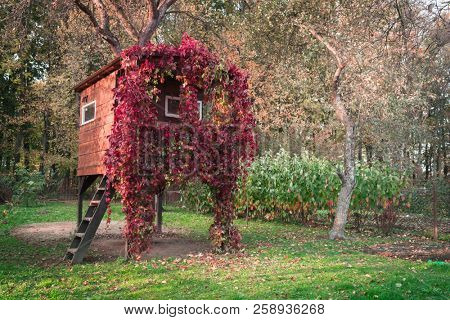 A house on a tree luminous from the inside and overgrown with red vine in an autumn garden
