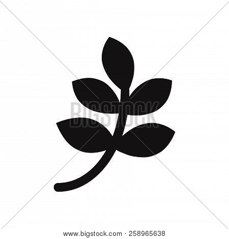 Branch With Leaves Icon Isolated On White Background. Branch With Leaves Icon In Trendy Design Style