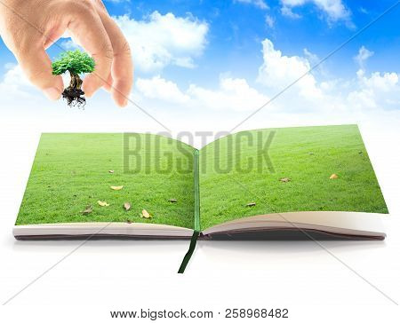 World Environment Concept: Kids Farmer Hand Holding Big Tree Over Book Of Nature On Blue Sky Backgro