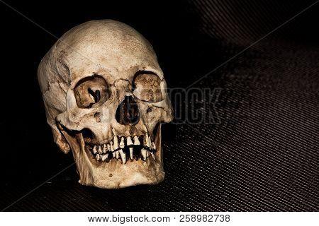 Human Skeleton Skull Head Isolated On Black Background