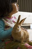 Cute little girl with rabbit on her lap poster