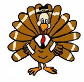 a cute turkey dressed as a pilgrim for thanksgiving. poster