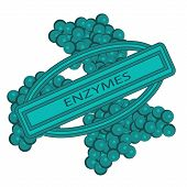 Enzymes cells vector illustration Closeup view. Metabolism booster. Digestive biotechnology poster