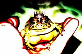 In my hand I hold a Prince Toad, (no idea where he got that neat crown) in a pop art version poster