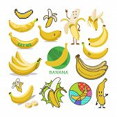 Banana vector yellow tropical fruit or healthy fruity snack of organic food diet banana-split illustration set of cartoon bananas emoticon isolated on white background poster