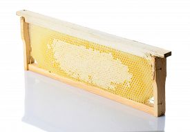 Bees Honeycomb With Honey In A Wooden Frame On A White Background, Isolate