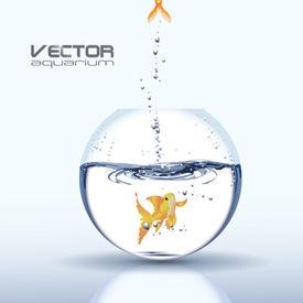 Vector Aquarium with Golden Carp