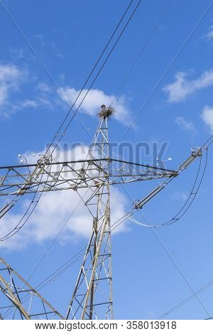 Storks Build Their Nest At The Top Of A Hight Voltage Overland Power Line In Portugal