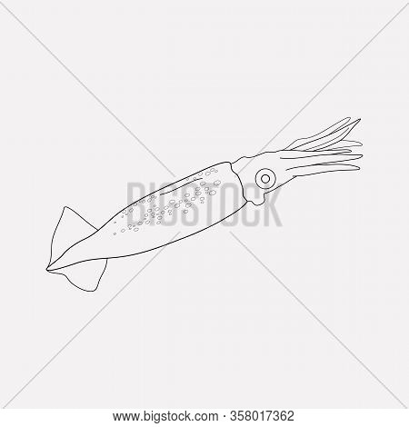Squid Icon Line Element. Vector Illustration Of Squid Icon Line Isolated On Clean Background For You