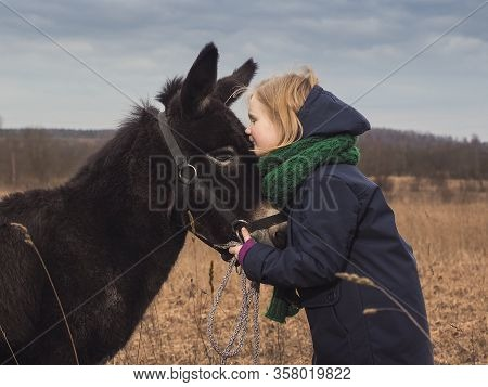 A Girl Kisses A Donkey. Child In The Field With An Animal