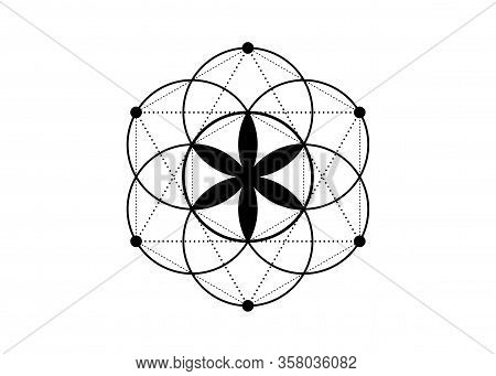 Seed Of Life Symbol Sacred Geometry.  Geometric Mystic Mandala Of Alchemy Esoteric Flower Of Life. V