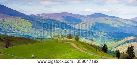 Rural Landscape In Mountains. Trees Along The Path Through Grassy Hill. Beautiful Nature Panorama In