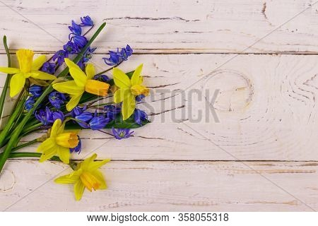 Bouquet Of Yellow Daffodils And Blue Scilla Flowers On White Wooden Background. Greeting Card For Ea
