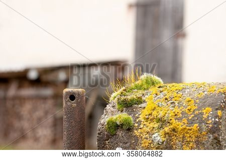 Close-up Of A Fence In A Farmyard With Stone Pillar Grown With Moss And Rusty Iron Post