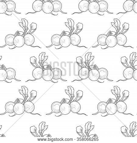 Vector Seamless Pattern With Doodle Radish; Hand Drawing Radish For Fabric, Wallpaper, Packaging, Te