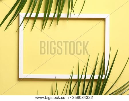 Summer Composition - Green Leaves On White Photo Frame Against Pastel Yellow Background