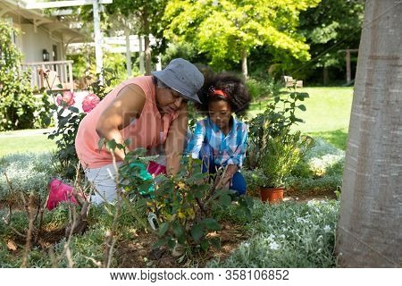 Front view of an African American grandmother with her granddaughter in the garden, kneeling and gardening together. Family enjoying time at home, lifestyle concept