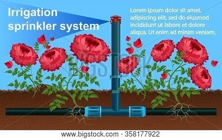 Banner Irrigation Sprinkler System Landing Page. Irrigation Water Delivery Method, Similar To Natura