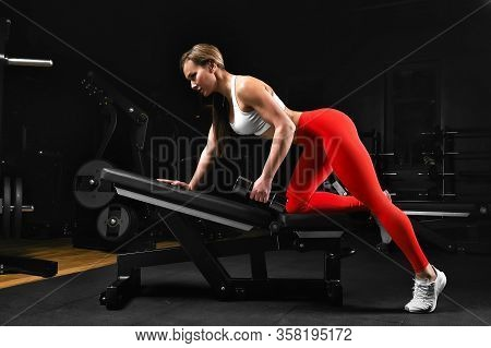 Attractive Shape Young Sporty Focused Fitness Girl With Ponytail Doing Biceps Exercises While Sittin