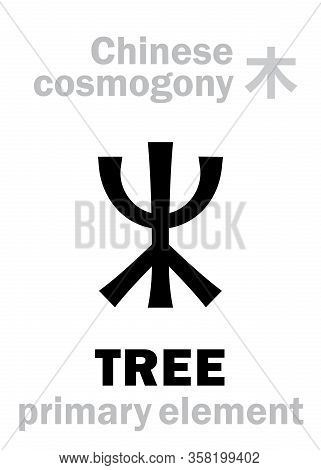Alchymie Alphabet: Tree / Wood -- One Of The Five Primary Elements Of Creation Of The World In Chine