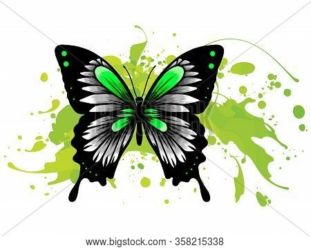 Realistic Monarch Butterfly In All Colors Of Rainbow On White Background. Vector