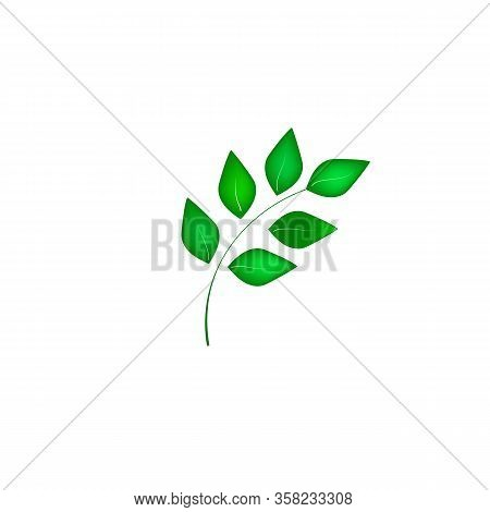 Leaf Sign. Fashion Graphic On White Background. Modern Stylish Abstract Texture. Colorful Template F