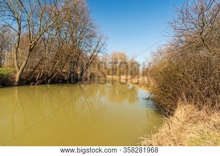 Odra River With Trees Around And Clear Sky Above Between Kosatka And Polanka Nad Odrou In Czech Repu