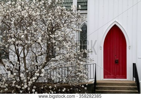 White Wood Church Red Arch Doors Budding Dogwood