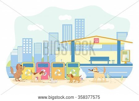 Pack Stray Dogs At Bus Near Trash At Bus Station. Animals Different Sizes And Colors Looking For Foo