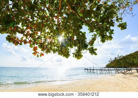 View Of Beautiful Tropical Landscape With Tree And Sunlight On Beach Sea Island With Ocean Blue Sky