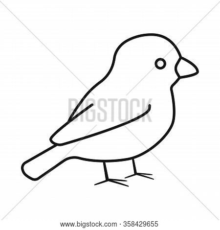 Vector Illustration Of Bullfinch And Bird Icon. Set Of Bullfinch And Robin Vector Icon For Stock.