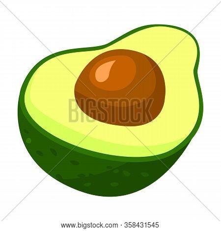 Half Avocado Vector Icon.cartoon Vector Icon Isolated On White Background Half Avocado.