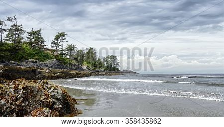 Beautiful Pacific Coastal Seascape With Coniferous Green Forest. Ocean Waves On The Pacific Coast, C