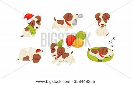 Cute Puppy Wearing Dog Collar Sleeping And Carrying Newspaper Vector Set
