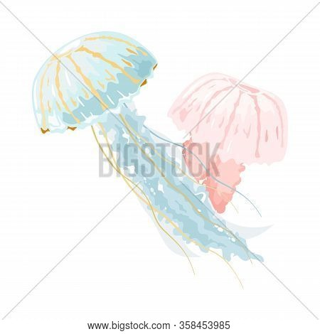 Light Blue And Pink Jellyfishes Or Medusae Are Free-swimming Marine Animals With Umbrella-shaped Pul