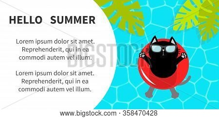 Black Cat Floating On Red Pool Float Water Circle. Hello Summer Banner Flyer. Swimming Water. Pool P
