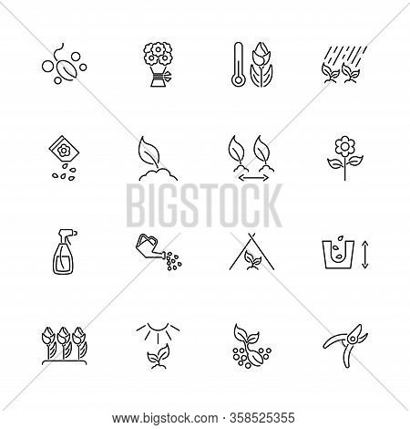 Flowers Growing Cultivation Outline Icons Set Black Symbol On White Background. Flowers Growing Cult