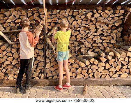 Children Pile Up Chopped Dry Firewood. Boys On The Background Of Chopped Firewood. Lumber For The Wi
