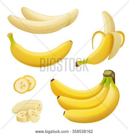 Banana Fruits. Exotic Desserts Natural Tropical Plants Vector Healthy Food Bananas. Illustration Ban